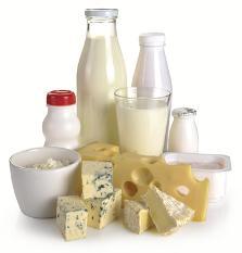 derivados lácteos