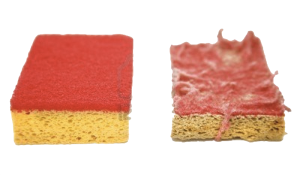esponja de cocina