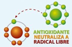 ácido alfa lipoico